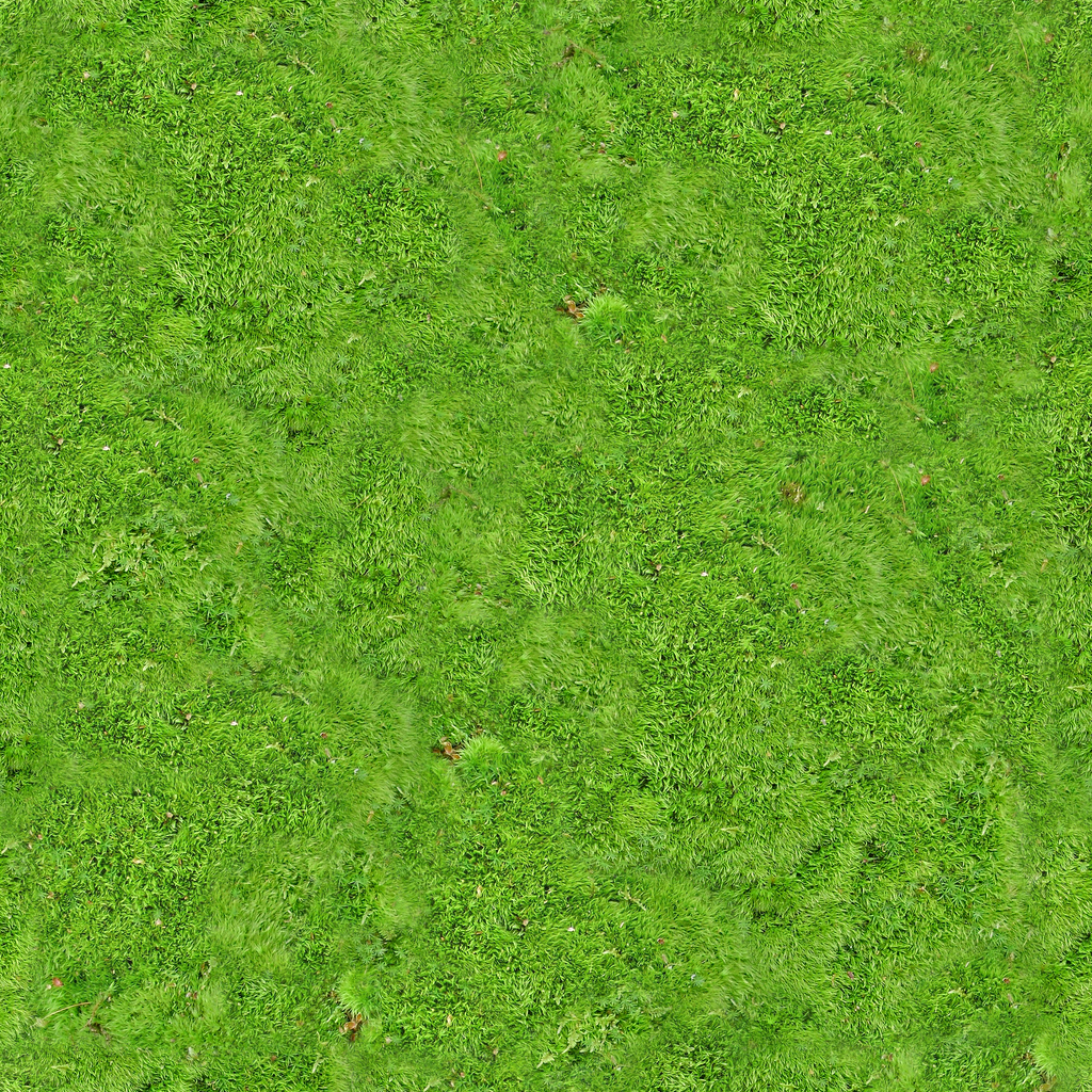 Tiling Moss Carpet Texture W Heightmap 1024x1024